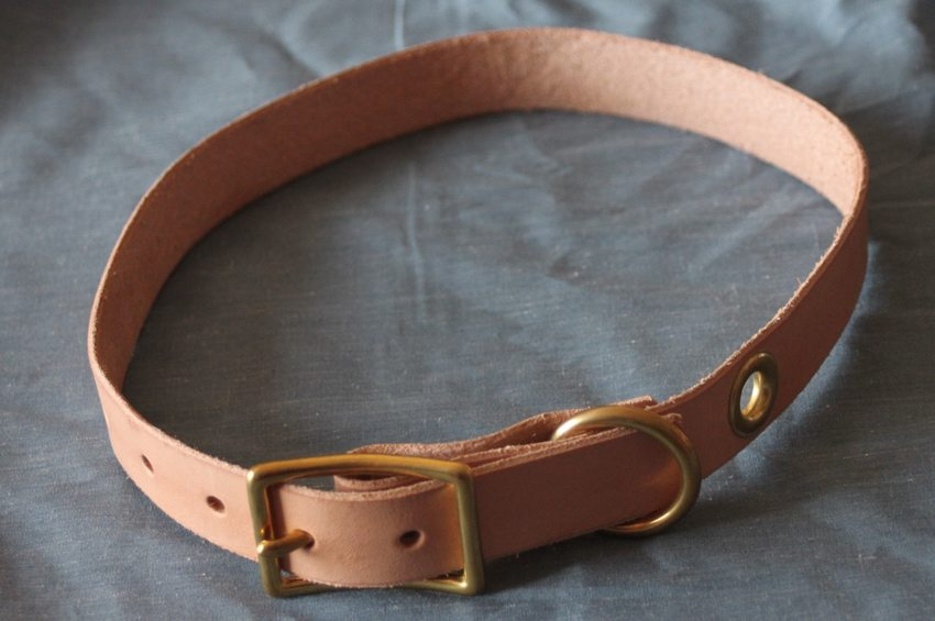Noah-Marion-Quality-Goods-Dog-Collar-1