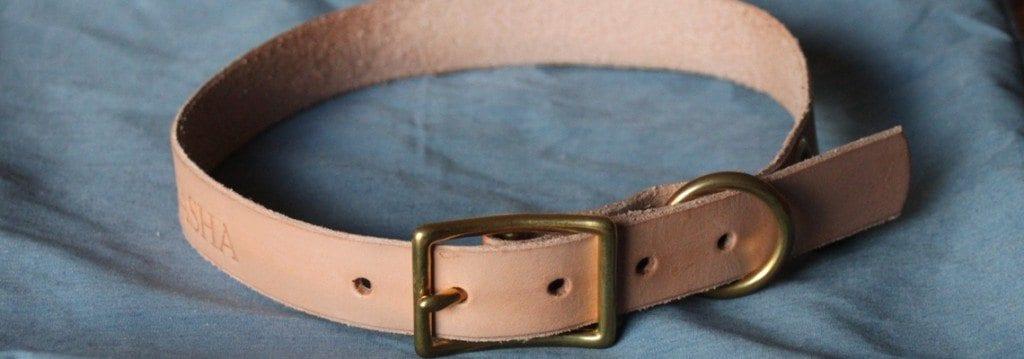 Noah-Marion-Quality-Goods-Dog-Collar-6