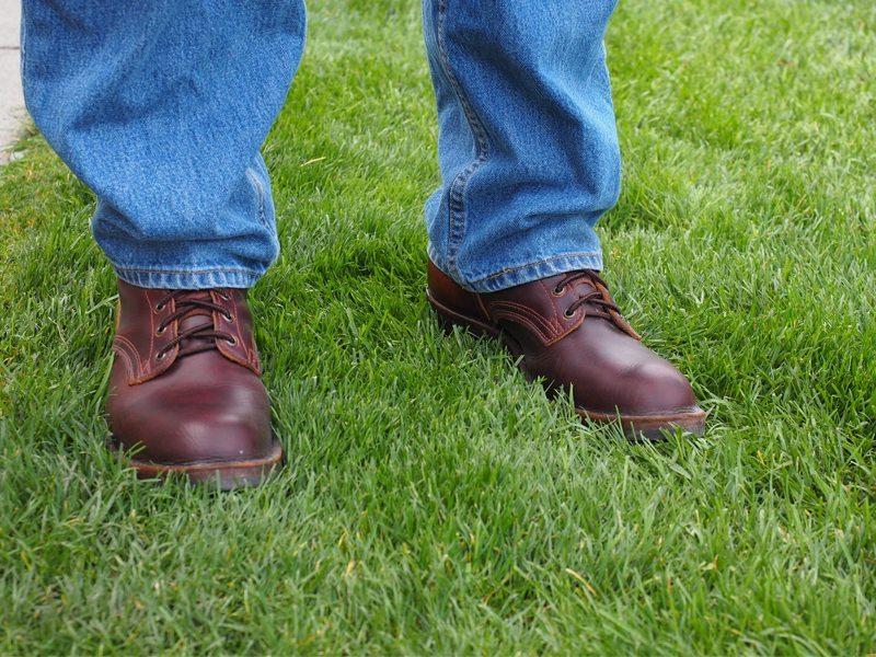 Nicks-Boots-Update-4