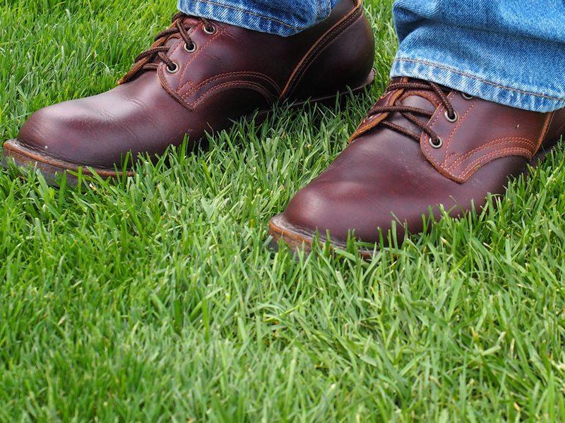 Nicks-Boots-Update-5