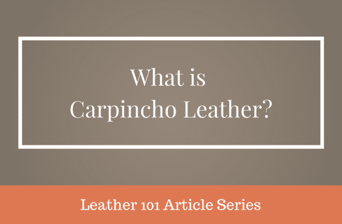 What is Carpincho Leather